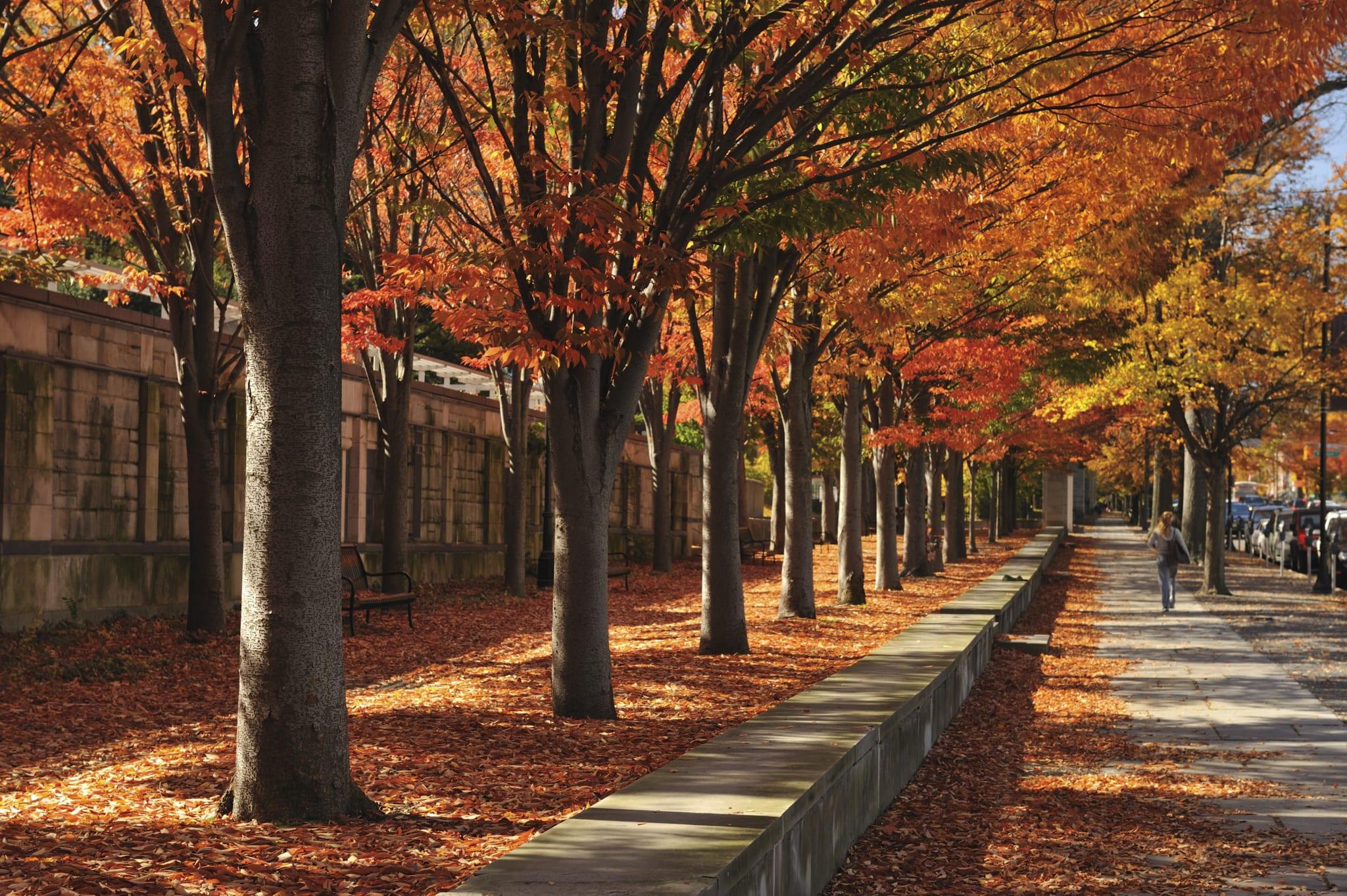 Princeton/Lawrence, NJ Medical Training Facility