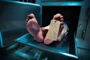Cadavers Medical Training Albuquerque, NM